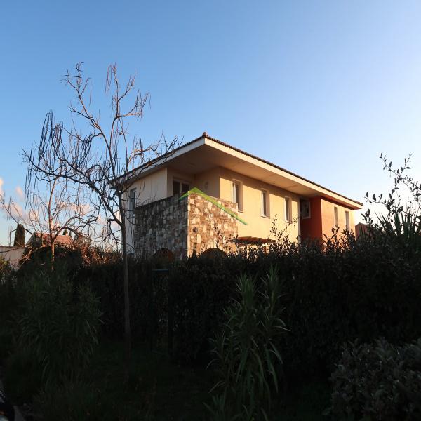Offres de location Appartement Borgo 20290