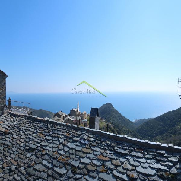 Offres de vente Maison de village San-Martino-di-Lota 20200